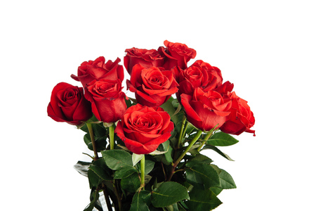 bunch of red roses: rose bouquet isolated on white