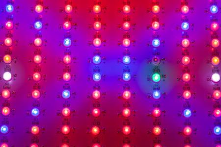 matrix: led grow light matrix, closeup view Stock Photo