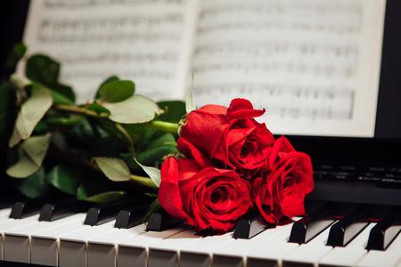 rosas rojas: rosas rojas sobre las teclas del piano y el libro de música