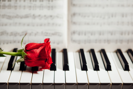 red rose on piano keys and music book