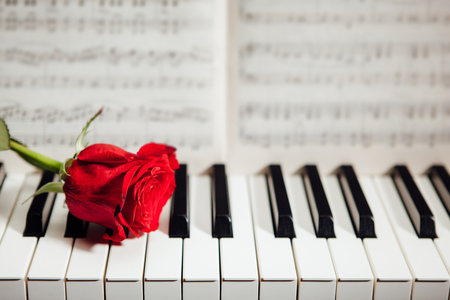 music book: red rose on piano keys and music book