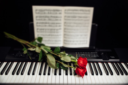 red sheet: red roses on piano keys and music book