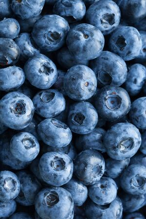 fresh blueberries background, closeup view Standard-Bild