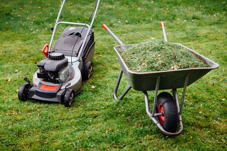 barrow: wheelbarrow with grass and lawnmower on green lawn