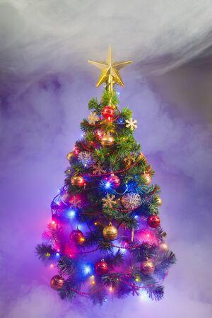 christmas tree purple: Christmas tree in frozen mist