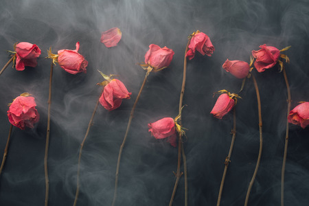 air dried: goth style dry roses, black background with smoke