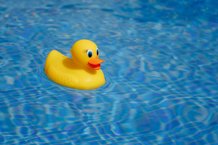 yellow rubber duck in blue swimming pool 스톡 콘텐츠 - 100763632