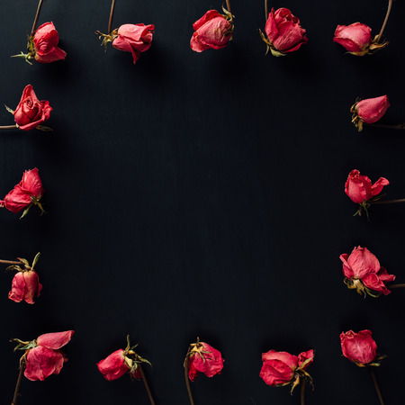 goth style dry red roses on black background