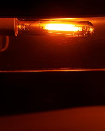 high pressure sodium lamp HPS orange light Standard-Bild