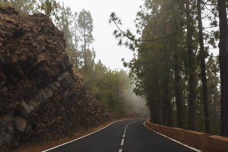 mountain road with dense mist clouds