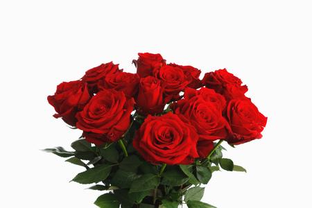 ramo de rosas rojas sobre fondo blanco, quince flores Foto de archivo