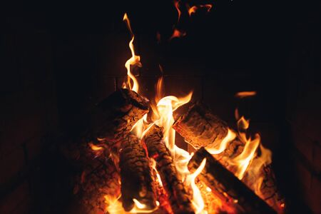 burning fire logs in the fireplace