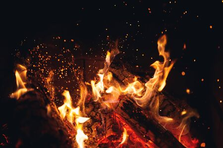 burning fire logs with sparks in the fireplace Banco de Imagens