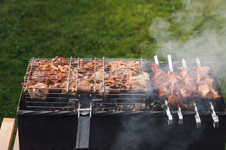 grill barbecue meat on a brazier with smoke, green grass background
