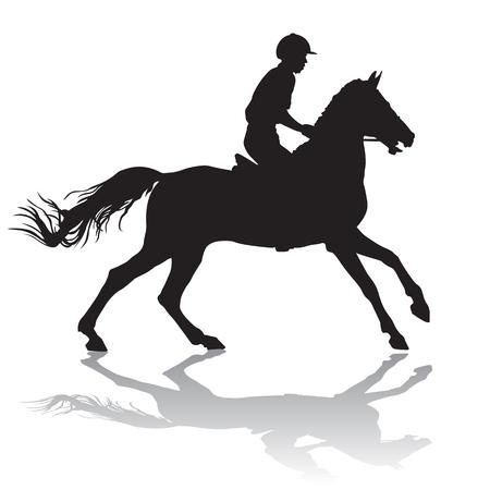 Rider. Jinete montado en un caballo. Las carreras de caballos. Competencia.