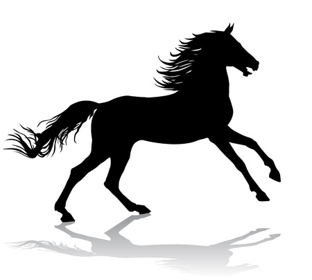 horse silhouette: A horse gallops fast, vector illustration silhouette on a white background. Illustration