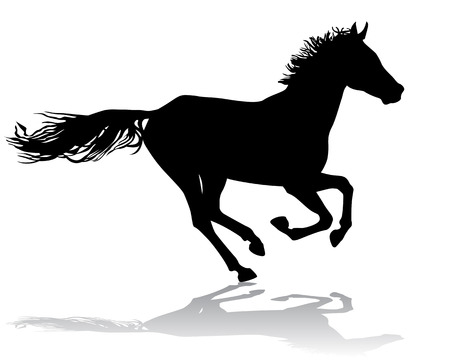 Een paard galoppeert snel, vector illustratie silhouet op een witte achtergrond.