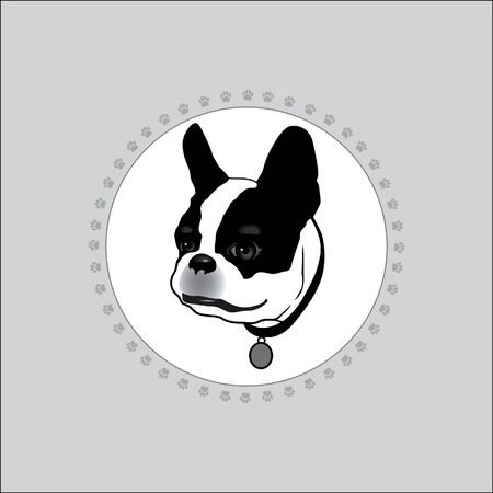 Dog is white with black spots. French Bulldog. The with the head of a dog. Frame made of dog tracks. Silhouette on a white background. Illustration