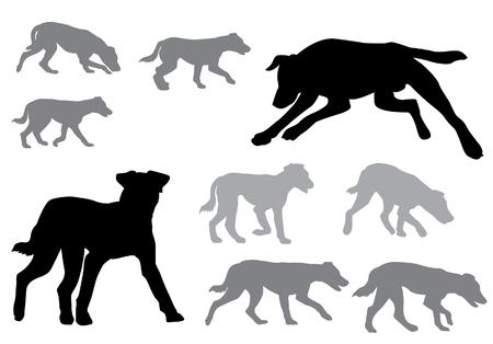 Hond. Puppy wandelen. Silhouet op een witte achtergrond