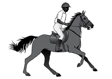 Rijder. Jockey rijden op een paard. Paardenraces. Wedstrijd. Silhouetten op een witte achtergrond. Stock Illustratie
