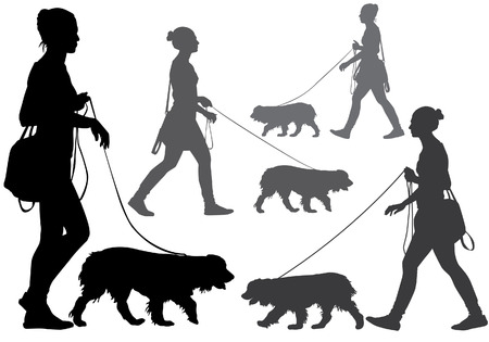 dog walking: A woman walking with a dog on a leash. Silhouette on a white background. Illustration