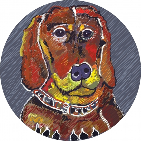 brightly colored dachshund with sad eyes in a circle