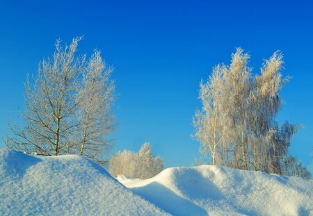 at came: The frosty winter came to steppes Altai Stock Photo