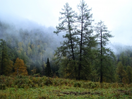 at came: The early fall came in Mount Altai
