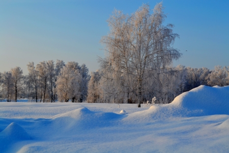 The cold winter came to steppes of Altai photo