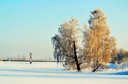 at came: There came frosty morning in steppes of Altai Stock Photo