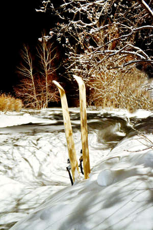 etude: Winter etudes are photographed at different times in Altai