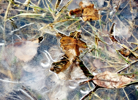 thawed:     Springtime first blue thawed patches appear on puddle                            Stock Photo