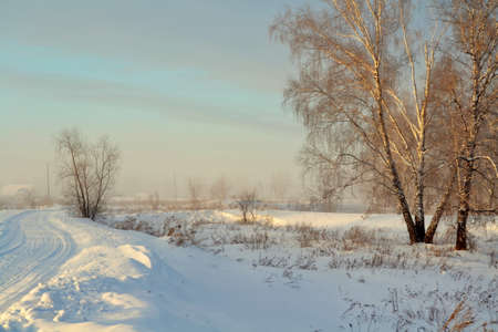 Severe cool winter came to wood and steppe Altaya