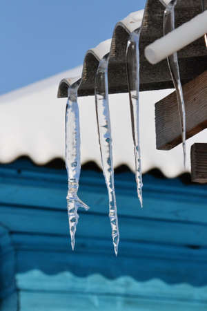 come up to: Spring icicles come up for February Stock Photo