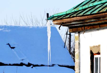 pit fall: Much siberian sowed; sown is found far from civilizations Stock Photo