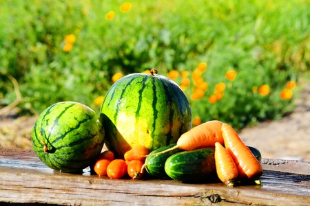 In nature exists much beautiful and tasty type of the food for person Stock Photo