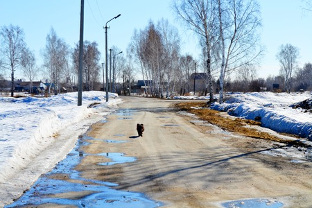 winter road: Roads Altaya serves for transportation cargo, passenger and journey