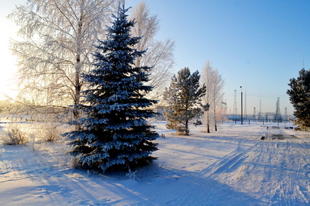 Beautiful nature Altaya pleases eye of the watcher