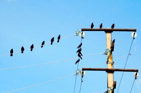 Elektropodstancii give cheap energy on whole region