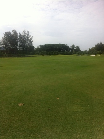country club: Sutera Habour Golf and Country Club