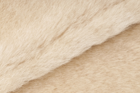 merino sheep: sheep fur texture close-up background