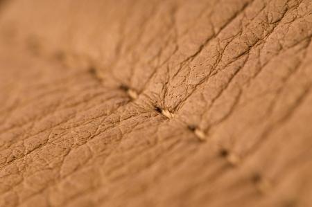 slink: natural leather macro shot background