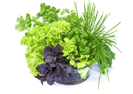 Fresh green-stuff basil, lettuce, parsley and green onion in glass bowl isolated on white background photo