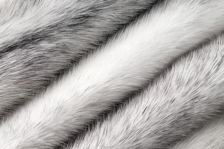 villi: Silver cross mink fur texture macro background