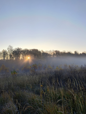 Beautiful thick fog sunrise Autumn Fall landscape over fields with treetops visible through fog 2018
