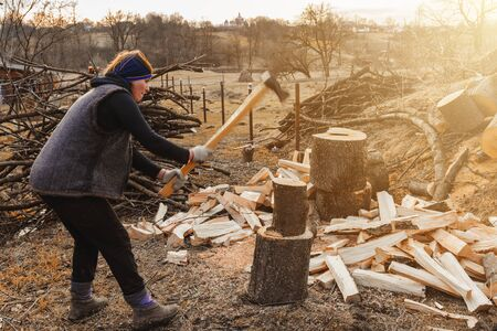 A rural woman shoots an ash tree wood for harvesting for the winter with an ax