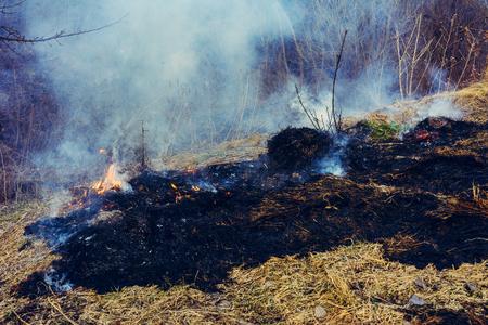 Black spots and smoke from burnt dry grass are environmentally hazardous Stock Photo