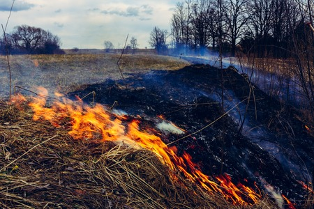 Lets say stop burning dry grass, it is dangerous Stock Photo