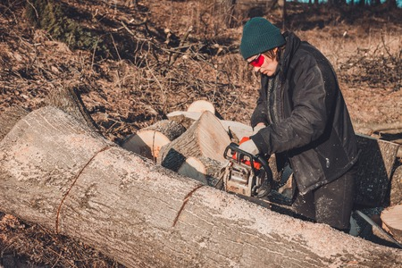 Beautiful young woman in glasses cuts a large tree of ash on wood for winter Stock Photo