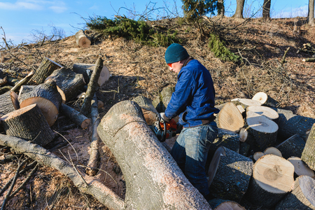 Harvesting firewood for winter, a man in glasses cut a tree by chainsaw holding it in his hands 2019